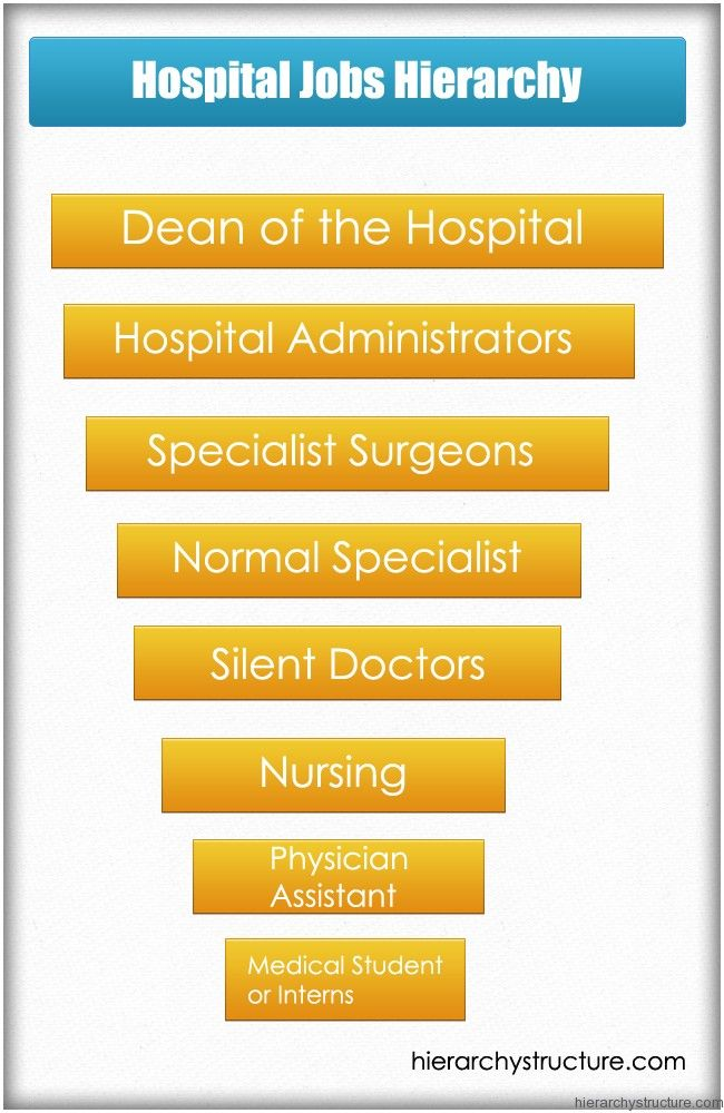 Hospital Jobs Hierarchy  Jobs Hierarchy    Hospital Jobs