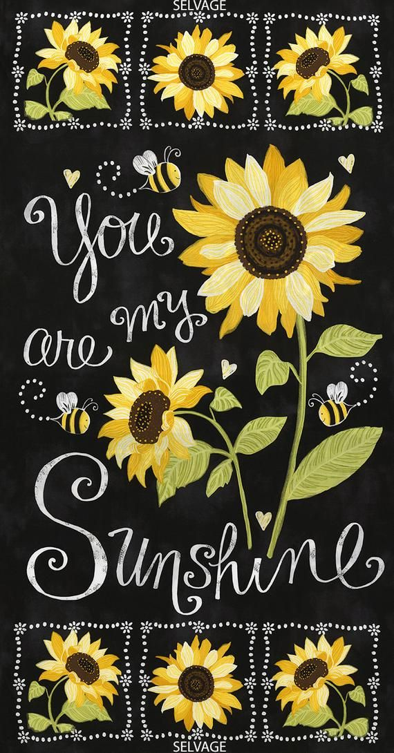 You Are My Sunshine C5344 Sunflowers & Bees Cotton