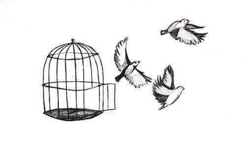 First Amendment News 247: Living Originalism and Its ...  |Bird Freedom Speech
