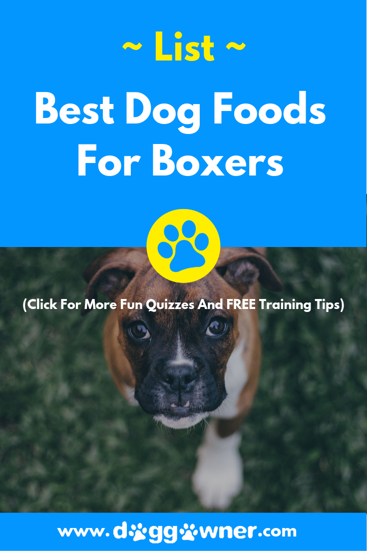 5 Best Dog Foods For Boxers In 2020 With Images Best Dog Food Dog Food Recipes Best Dog Food Brands