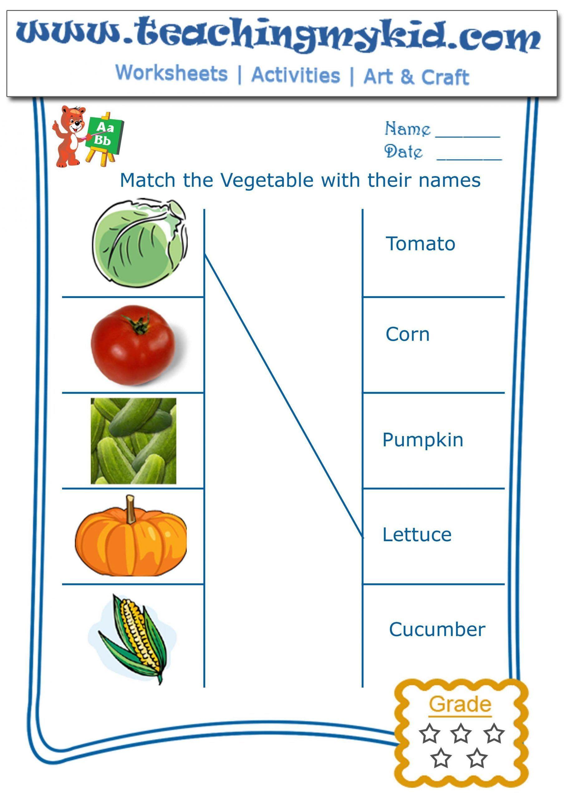 Vegetables Worksheet For Kindergarten