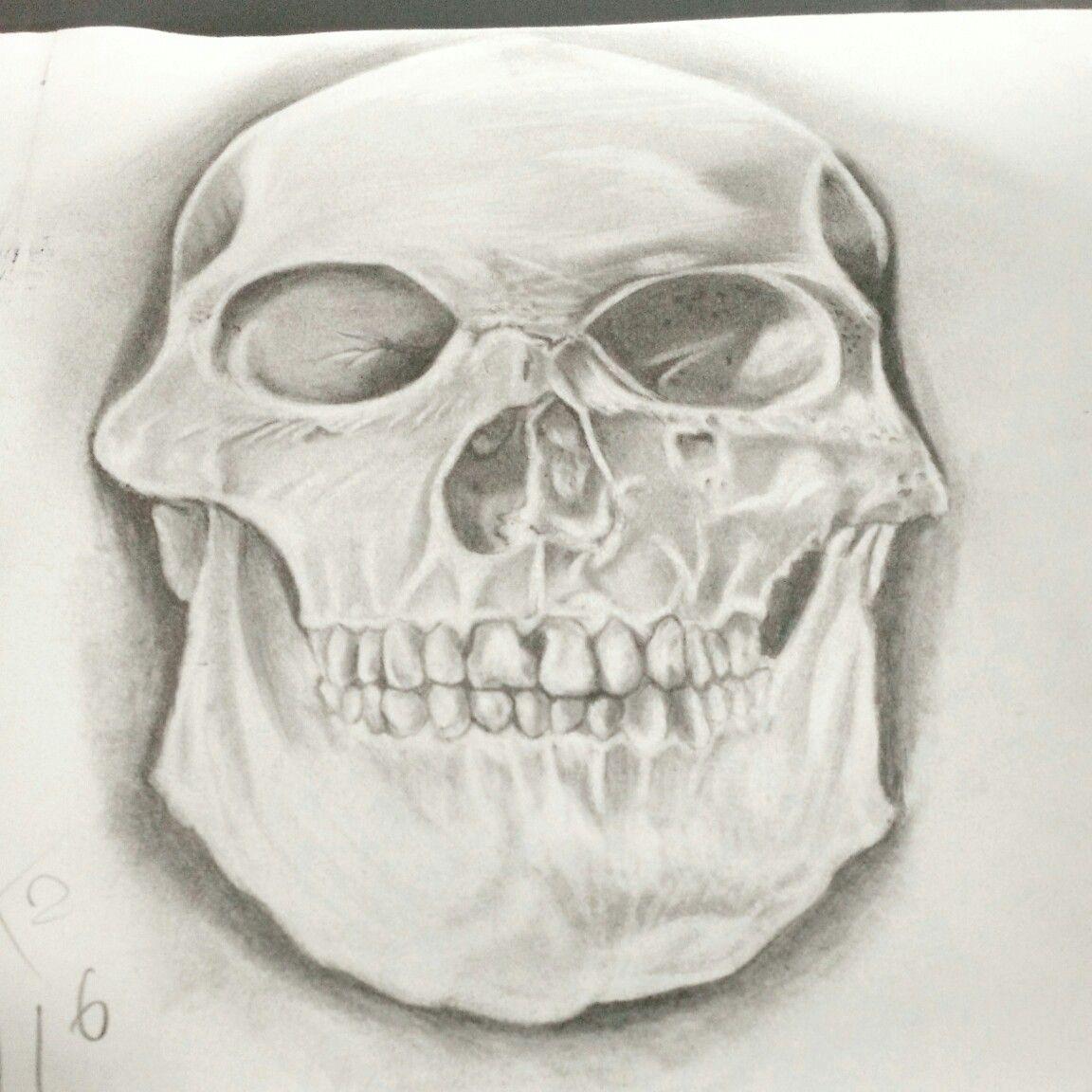 Cranio desenho