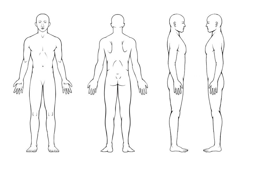 body diagram for professional massage chart: front, back, left and,
