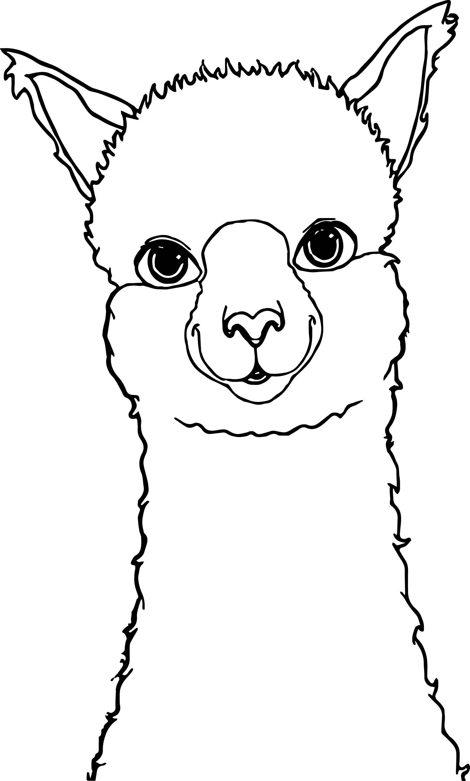 Alpaca Drawing Coloring Page Alpaca Drawing Animal Coloring Pages Llama Face