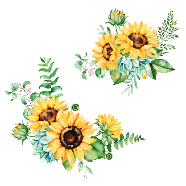 Beautiful floral collection with sunflowers,leaves,branches,fern...