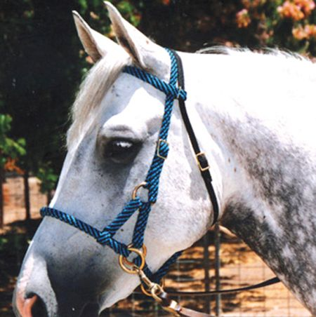 Rj sidepull trail bridle colors options equestrian for Paracord horse bridle