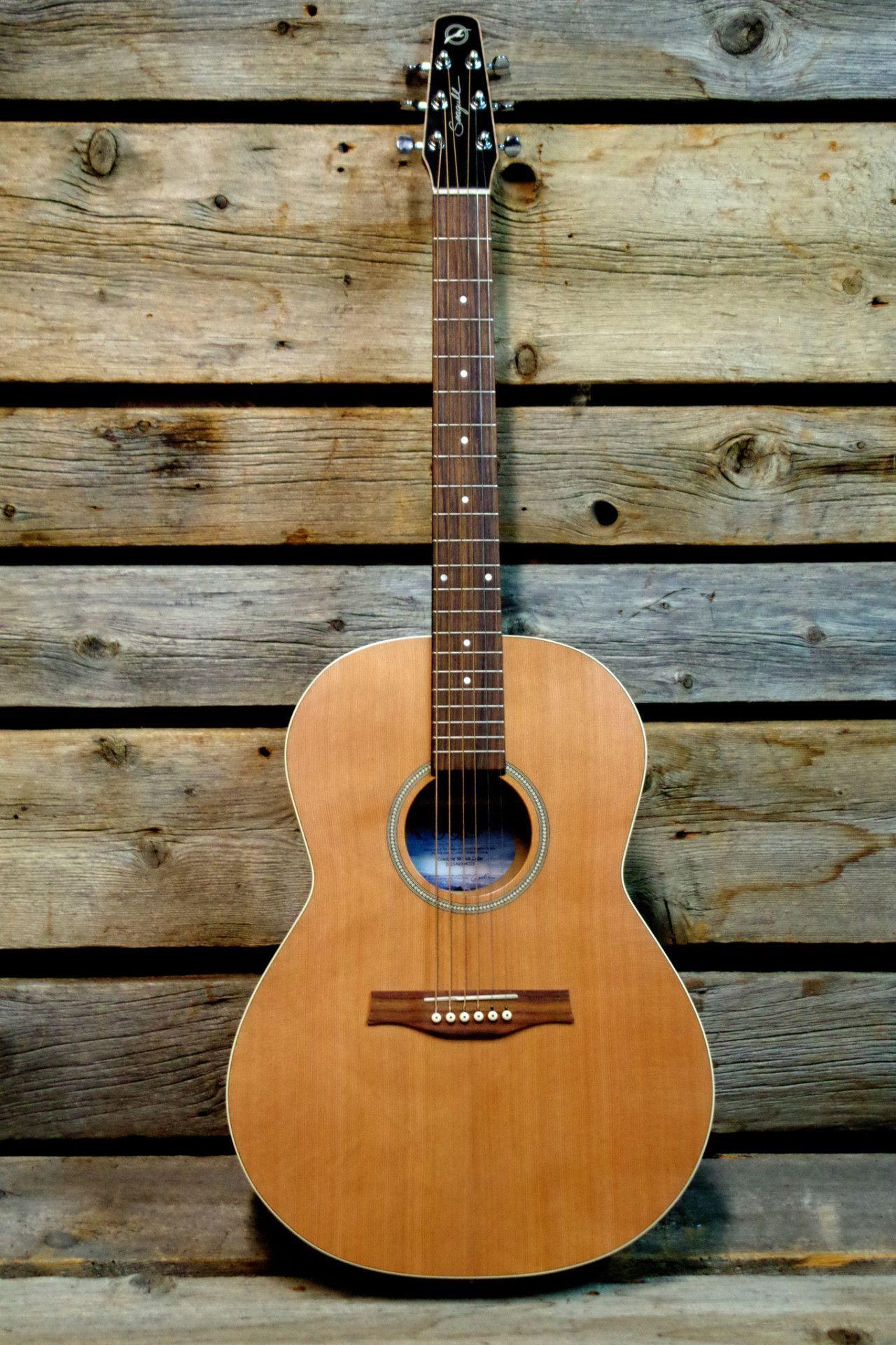 Seagull Coastline S6 Cedar Folk Acoustic Guitar Acoustic Best Acoustic Guitar Acoustic Guitar