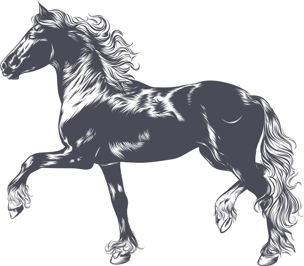 horse illustration | illustration | pinterest | かっこいい馬の画像