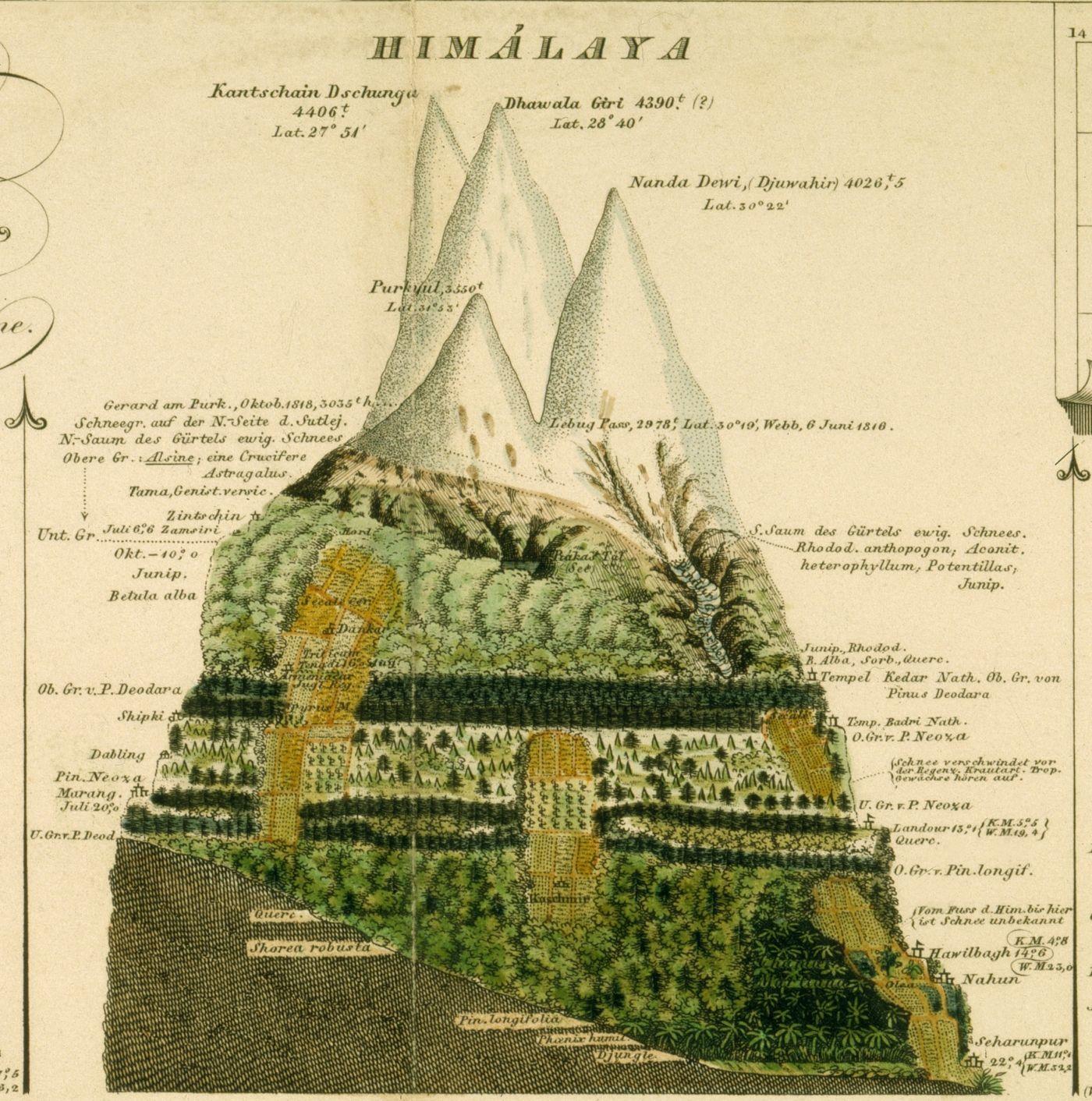 LEBEN - Alexander von Humboldts Amerikanische ...