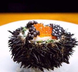 Fd Koi Food Australia