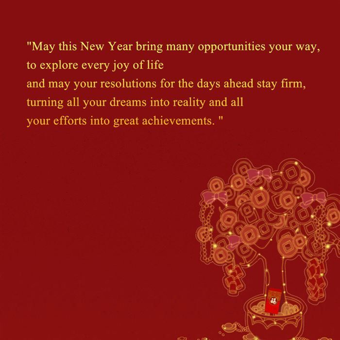 lunar new year in vietnam tet holiday newyouth tourism 2015holiday pictures ho happy chinese new year lunar new year pinterest tourism - Chinese Lunar New Year 2015