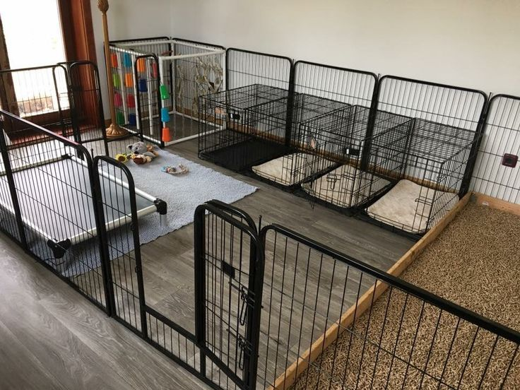 30+ Best Indoor Dog Kennel Ideas Page 5 The Paws in