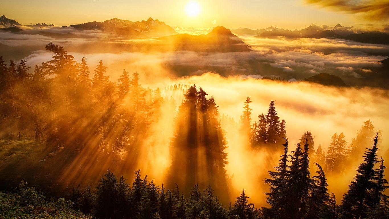 Очень красивая природа. | Красивые места, Природа, Фотографии