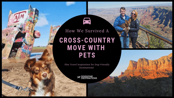 Memorable And Pet Friendly Things To Do In Sedona Az In 2020 Moving Cross Country Pet Friendly Hotels Pet Travel