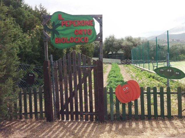 In the Peperone Organic Vegetable Garden they can pick and eat their own vegetables, at #Resort Le Dune #Sardinia for #families - a hidden gem? Kirsty McCabe travels to find out... - Travel Reviews - Junior