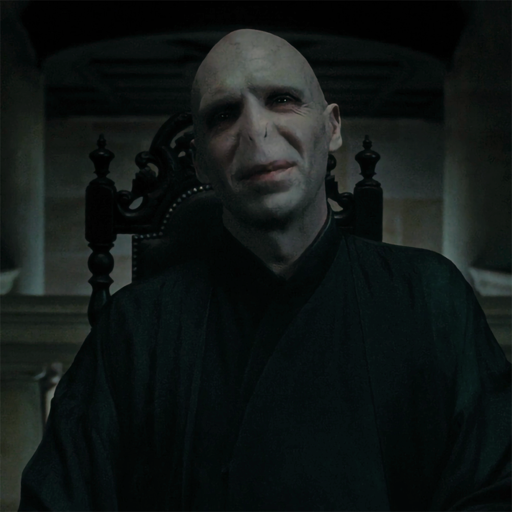 Lord Voldemort Voldemort Lord Voldemort Harry Potter Gif