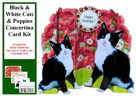 Black and White Cats and Poppies Concertina Card Kit on Craftsuprint designed by Elaine Sheldrake - Another of my original watercolour paintings provides the backdrop for these beautiful cats. This kit is very versatile depending on where you want to place the cats and sentiments and on which fold you want to stick them. Full instructions are included. They are A4 when flat but fold up in a concertina to stand up and to fit an A5 envelope for cheaper postage costs. I have included three ...