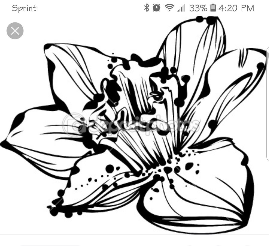 December Birth Flower Tattoo Black And White: Thanks Google Image Search! March
