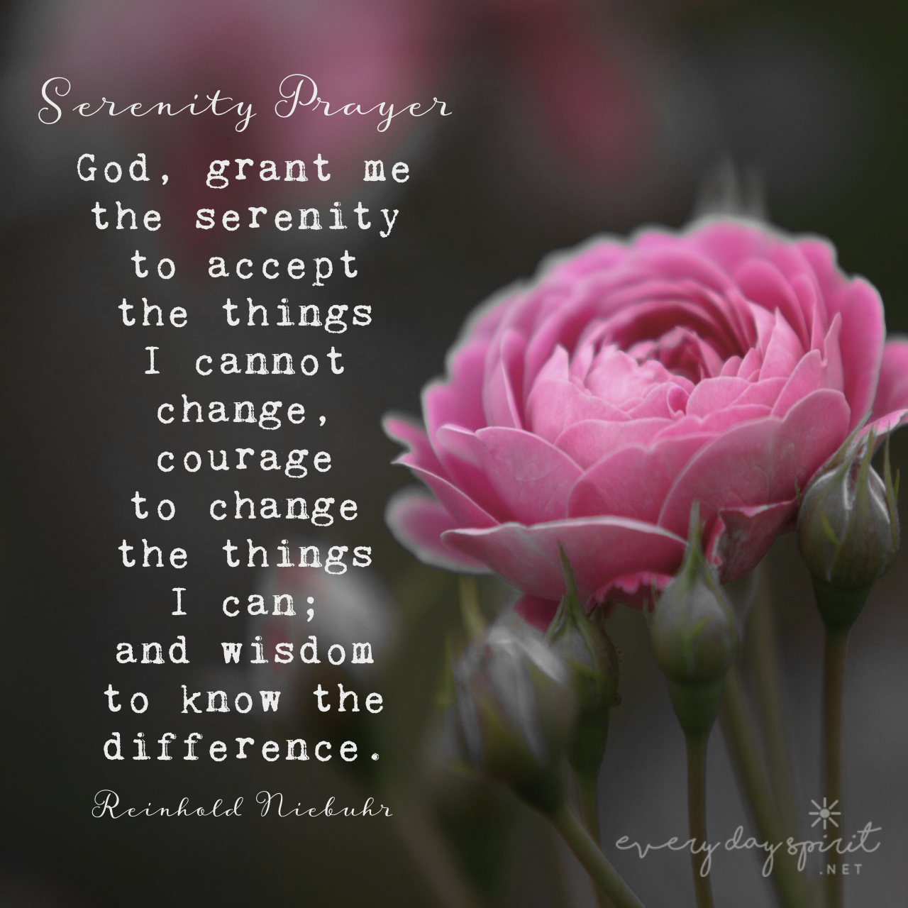 A Prayer For Serenity Courage And Wisdom Xo Every Day Spirit A Daybook Of Wisdom Joy And P Serenity Prayer Serenity Prayer Wallpaper Serenity Prayer Framed