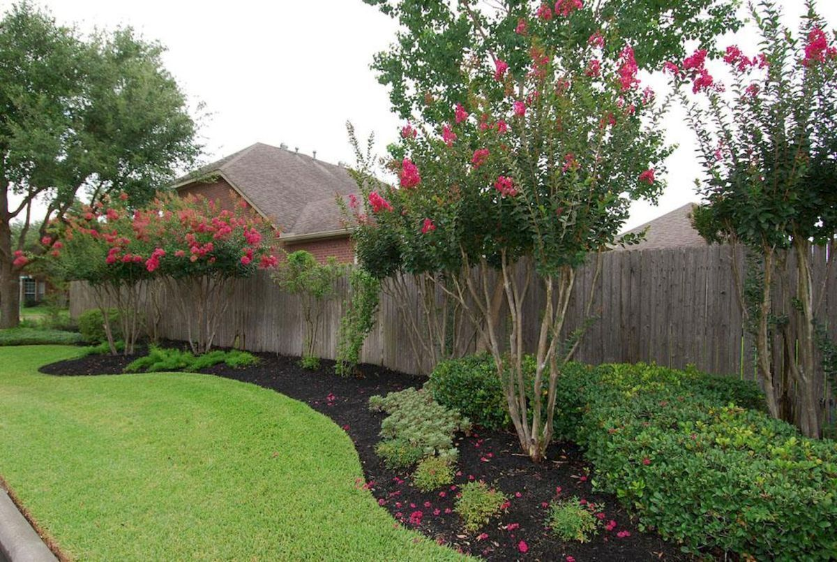 Backyard Privacy Fence Landscaping Ideas On A Budget 43 Landscapeonabudget Privacylandscapi Privacy Fence Landscaping Fence Landscaping Privacy Landscaping