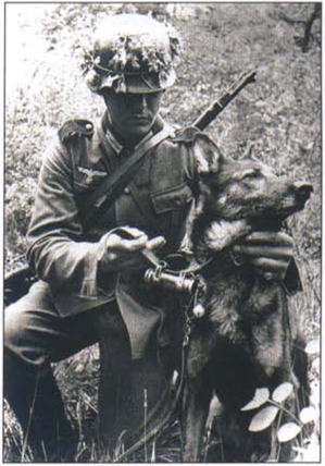 A German soldier & his messenger unit dog. (With images