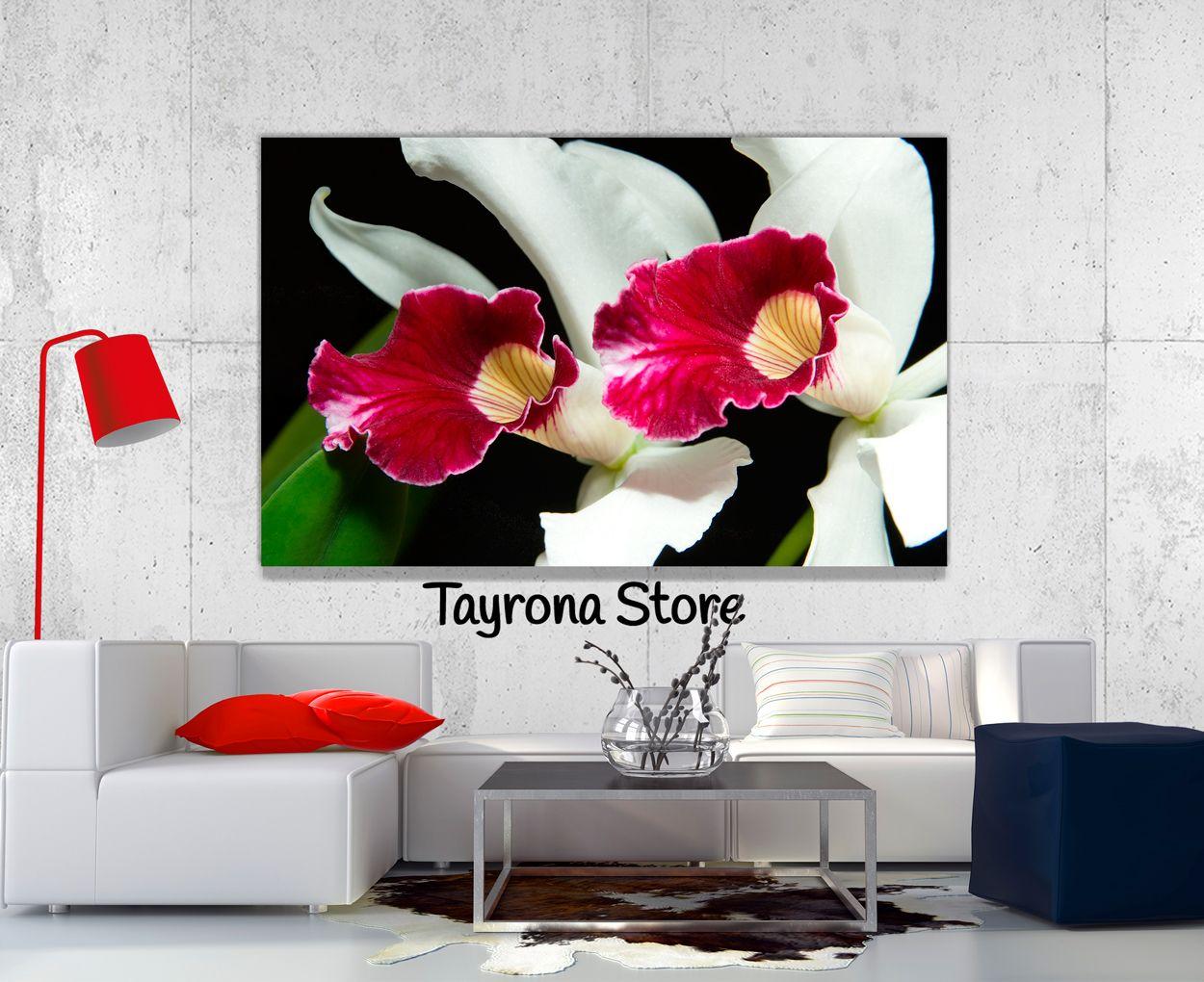Cuadros Decorativos Flores 76 Orquidea Tayronastore Cuadros