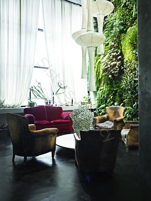 An Indoor Garden via Sisters Agency
