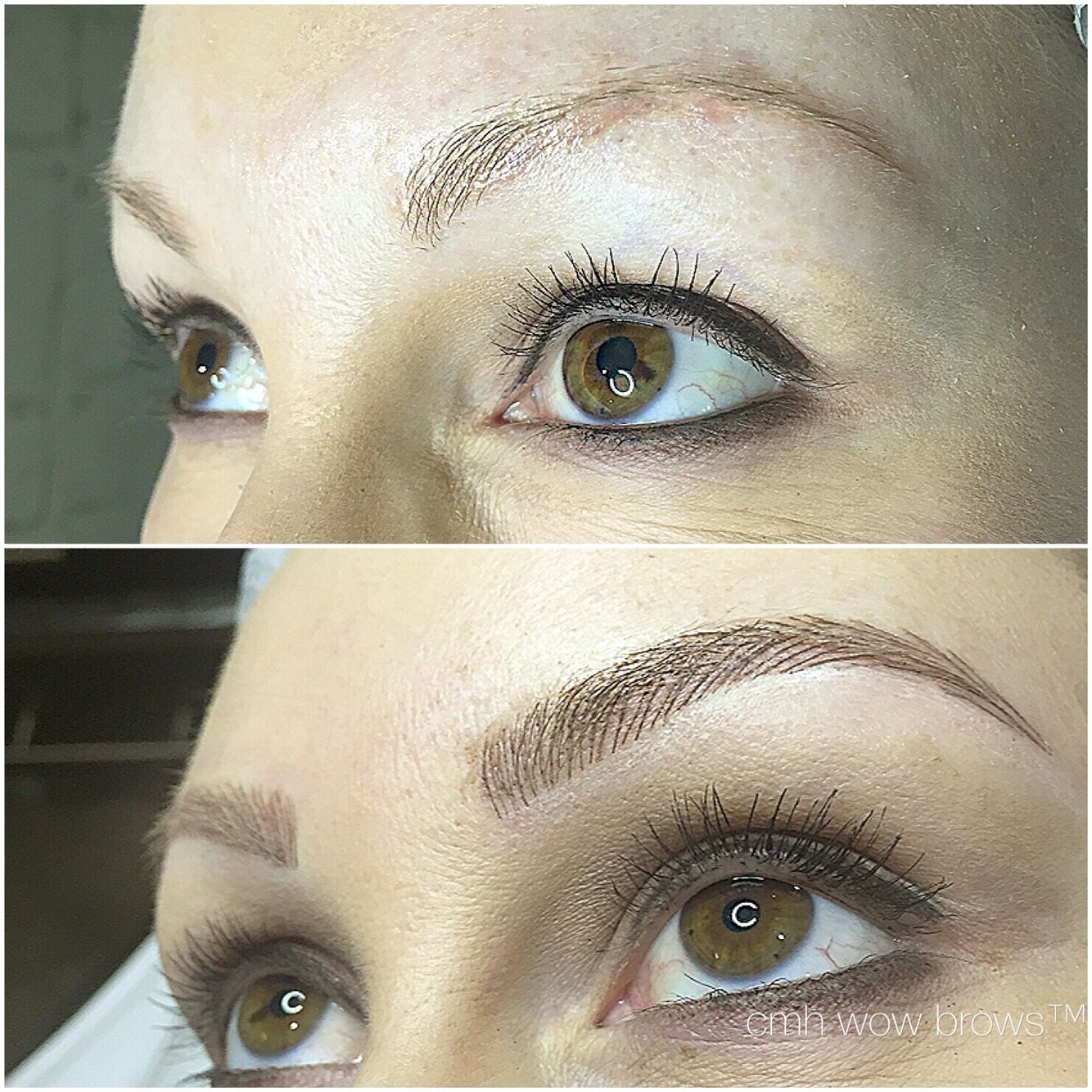Natural Eyebrow Tattooing Hair stroke / Feather Touch / Microblading ...