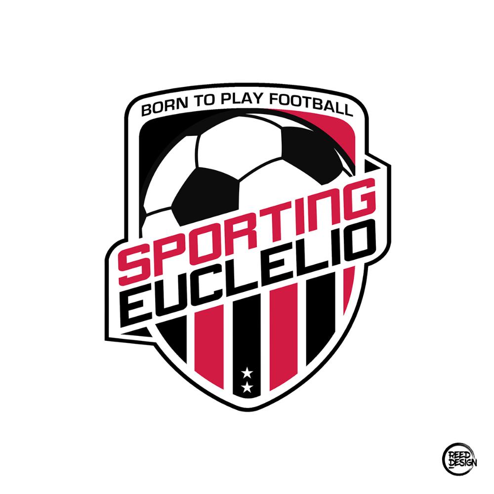 Fantasoccer Teams On Behance In 2020 Football Logo Design Sports Logo Design Soccer Logo