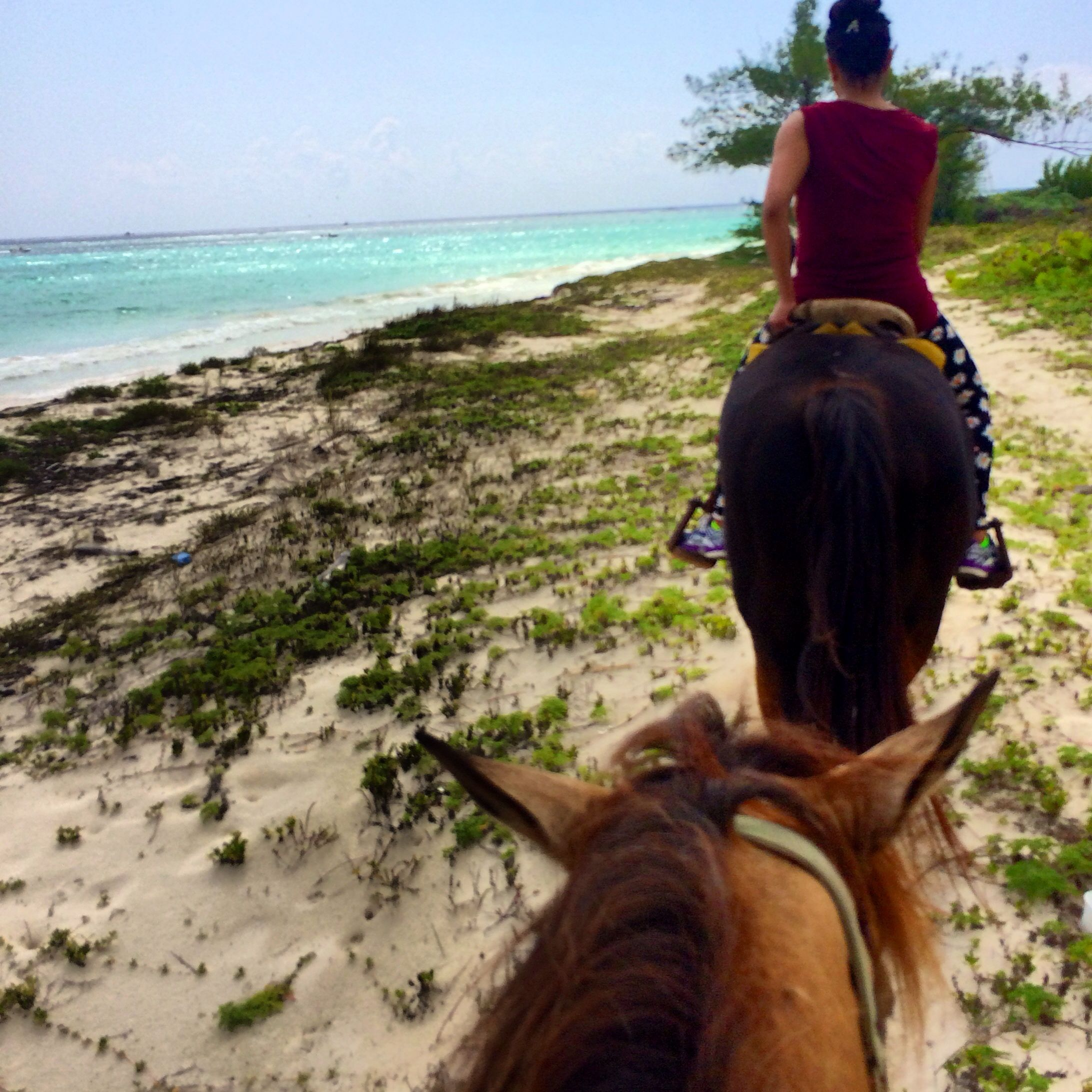 Horse back riding on a private beach in Playa Del Carmen