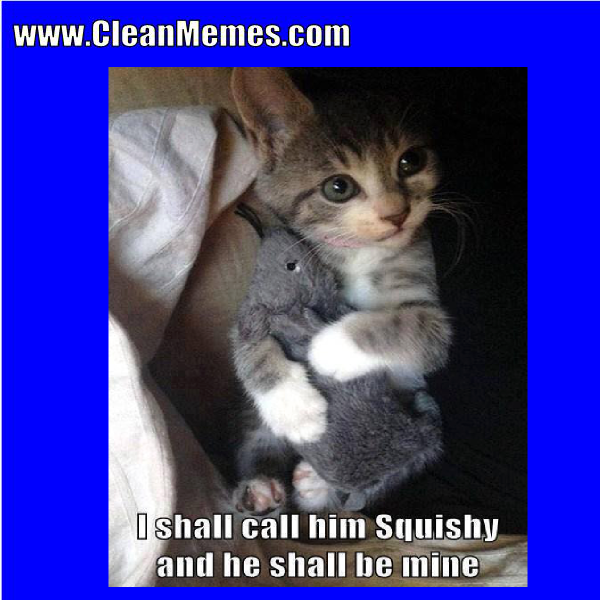 Pin By Clean Memes On Clean Memes Funny Cat Memes Cat Memes Funny Cat Fails