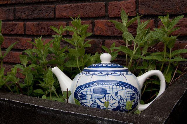 ☕ Een echt hollands theepotje!