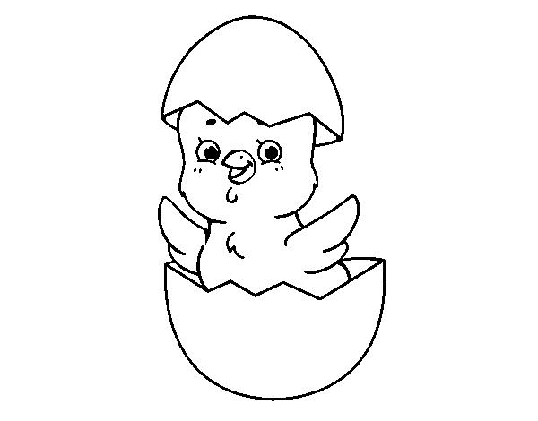 Dibujo De Pollito Feliz De Pascua Para Colorear Dibujos Net Pollitos Dibujo Pollo Animado Pascua Para Colorear