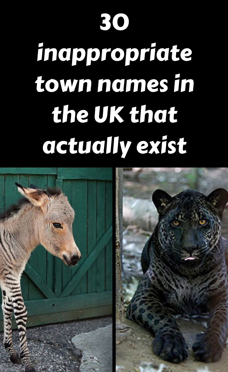 30 Inappropriate Town Names In The Uk That Actually Exist Spring Senior Pictures Amazing Photography Funny Pictures