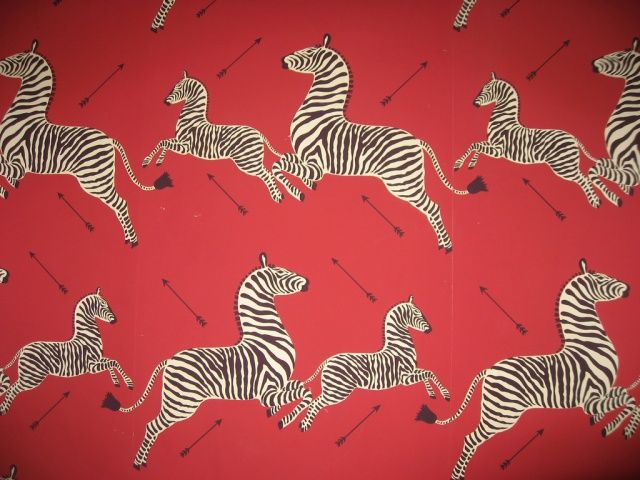 royal tenenbaums zebra
