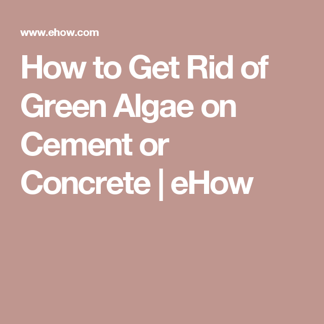 How To Get Rid Of Green Algae On Cement