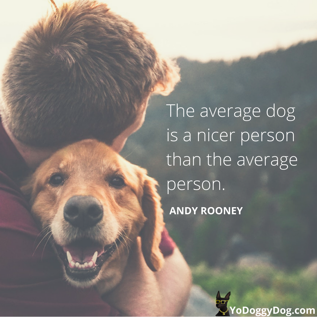100+ Dog Quotes + Sayings to Make You Laugh, Cry and Love