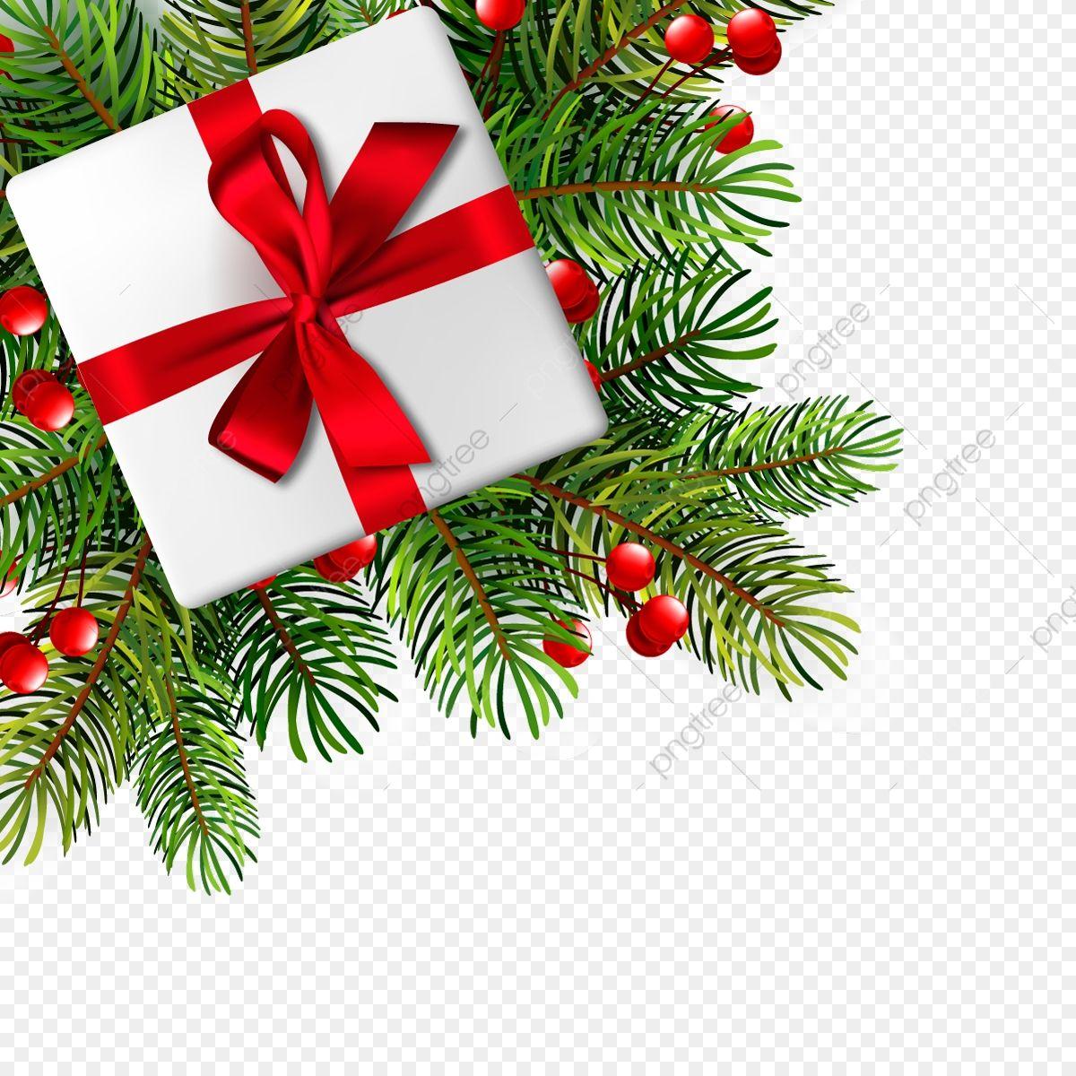 Christmas Illustration With Realistic Fir Branches Vector Illustration Christmas Gift Merry Chris In 2020 Christmas Illustration Branch Vector Merry Christmas Vector