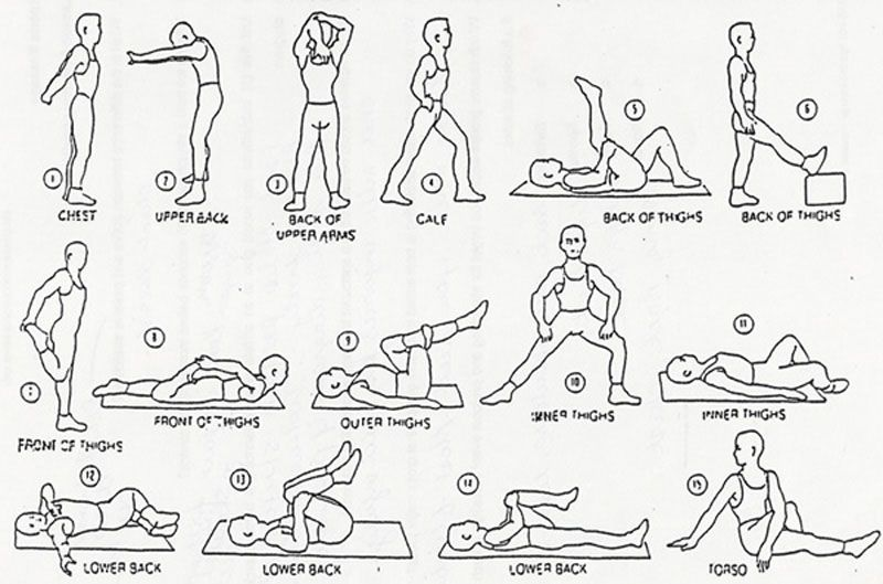 Image result for simple stretching exercises