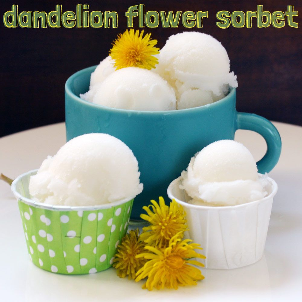 Dandelion Flower Sorbet   1 quart dandelion blossoms   3 c water  1 c sugar   3 tbsp lemon juice    1.Use yellow petals from dandelion  2. Rinse   3.  Combine the water and sugar  over med heat.  As soon as the mixture comes to a boil, remove it from the heat and add the drained petals.  Let steep for 1 hour.  4.  Strain the petals out of your syrup.  Stir the lemon juice into the syrup mixture.  Now place that in a covered container in the refrigerator for at least 8 hours.  Put into ice…