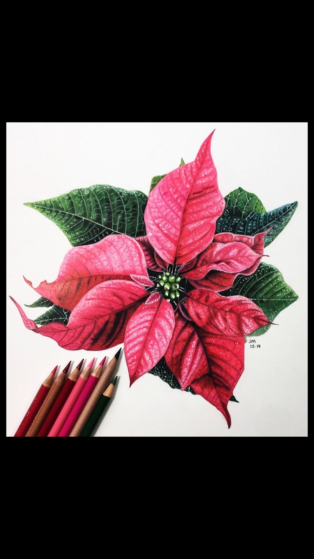 Jennifer Morrison Art Is Creating Botanical Colored Pencil Drawing Tutorials Patreon Video Video Realistic Flower Drawing Flower Drawing Tutorials Flower Drawing