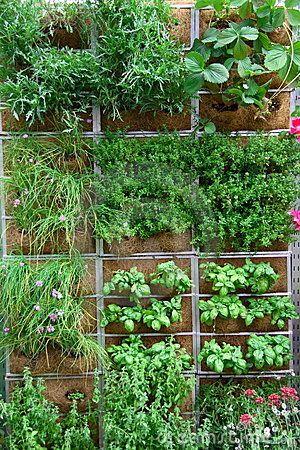 Urban Gardening Ideas Guzewski Landscapes Urban Tuinieren