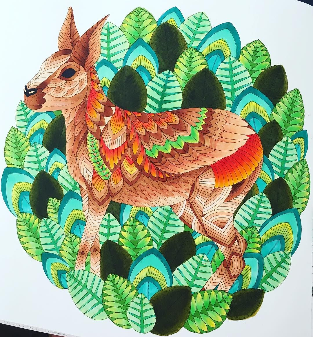 Patagonian Mara from Curious Creatures using Copic Markers #milliemarotta #curiouscreatures #copicmarkers #copicamateur #adultcoloringbook #patagonianmara