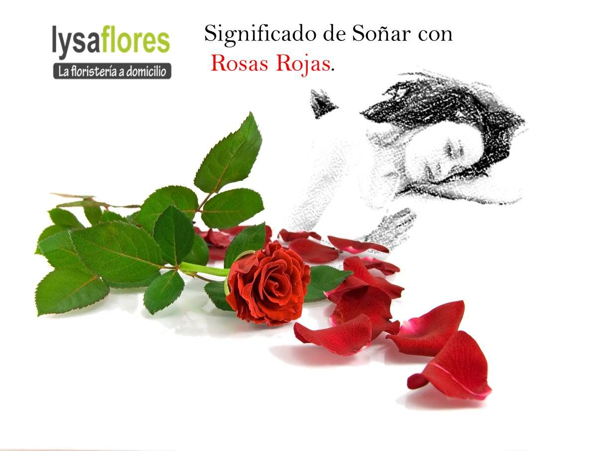 Significado De Soñar Con Rosas Color Rojo Si Sueñas Con Flores Y Son Rosas Rojas Es Motivo De Pasión Y Mucho Deseo Si Llegas A Oler Movie Posters Poster Art