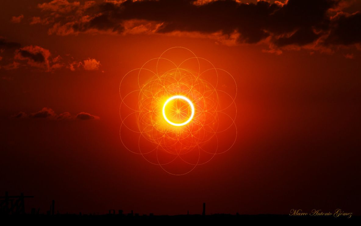 Image result for the sun and the flower of life