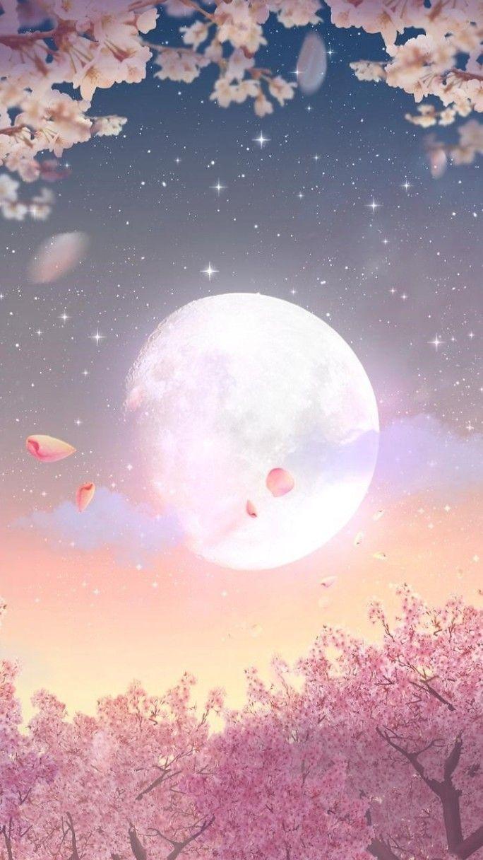 Moon light light Moon sakura light Moon sakura