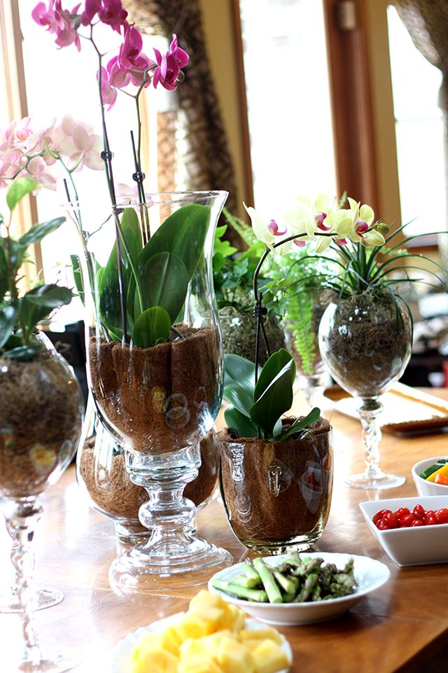 Liners in a glass hurricane with orchid. Beautiful flowers for Mother's Day, ladies' lunch/brunch, summer book club, etc.