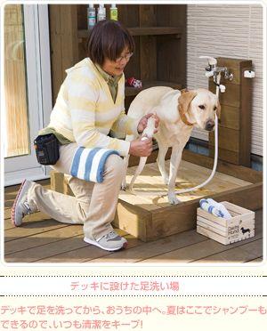 デッキに設けた足洗い場 デッキで足を洗ってから おうちの中へ 夏はここでシャンプーもできるので いつも清潔をキープ 犬のスペース ドッグラン 犬の庭