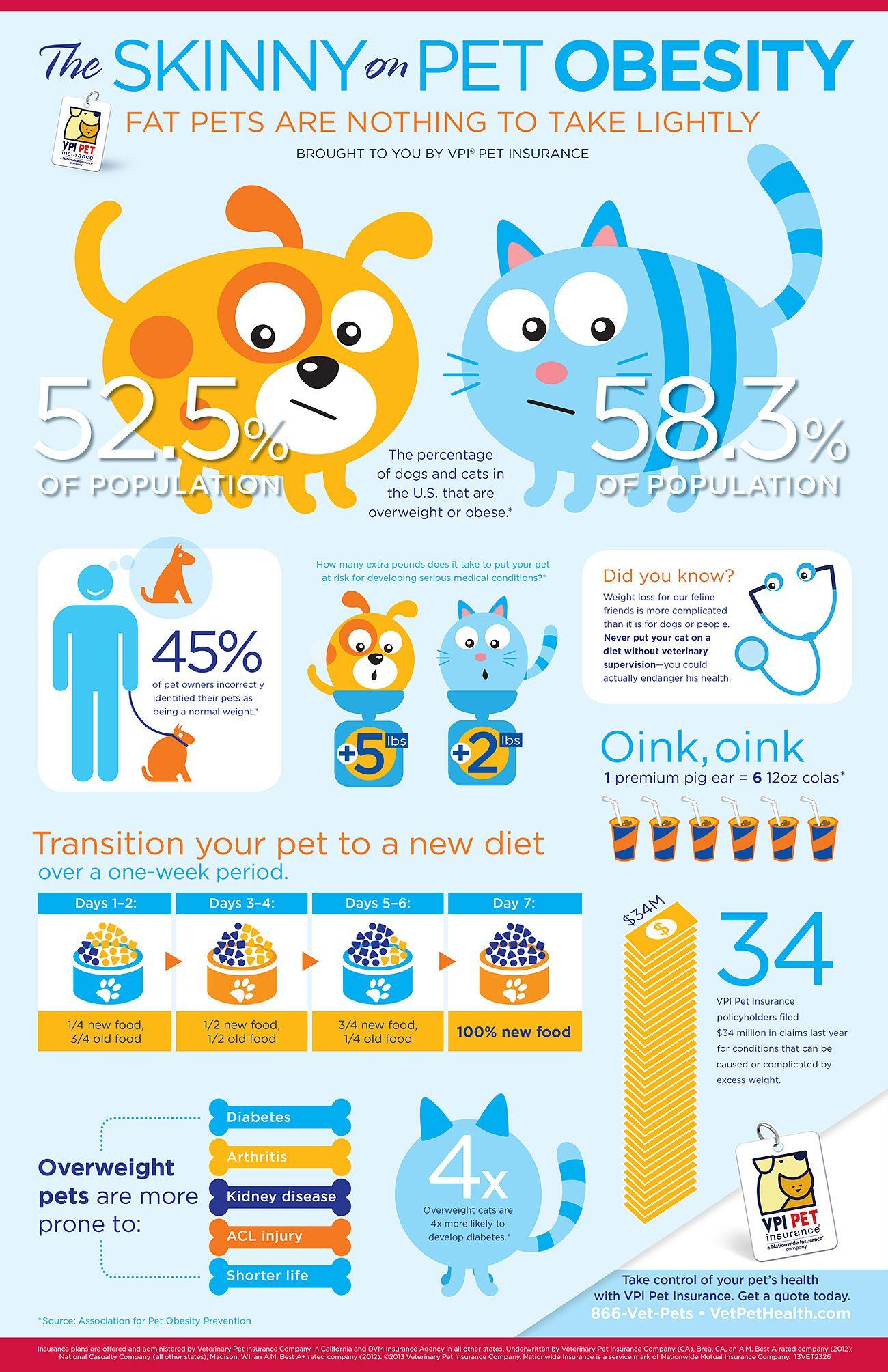 Veterinary Pet Insurance, Pet Health Insurance Plans for