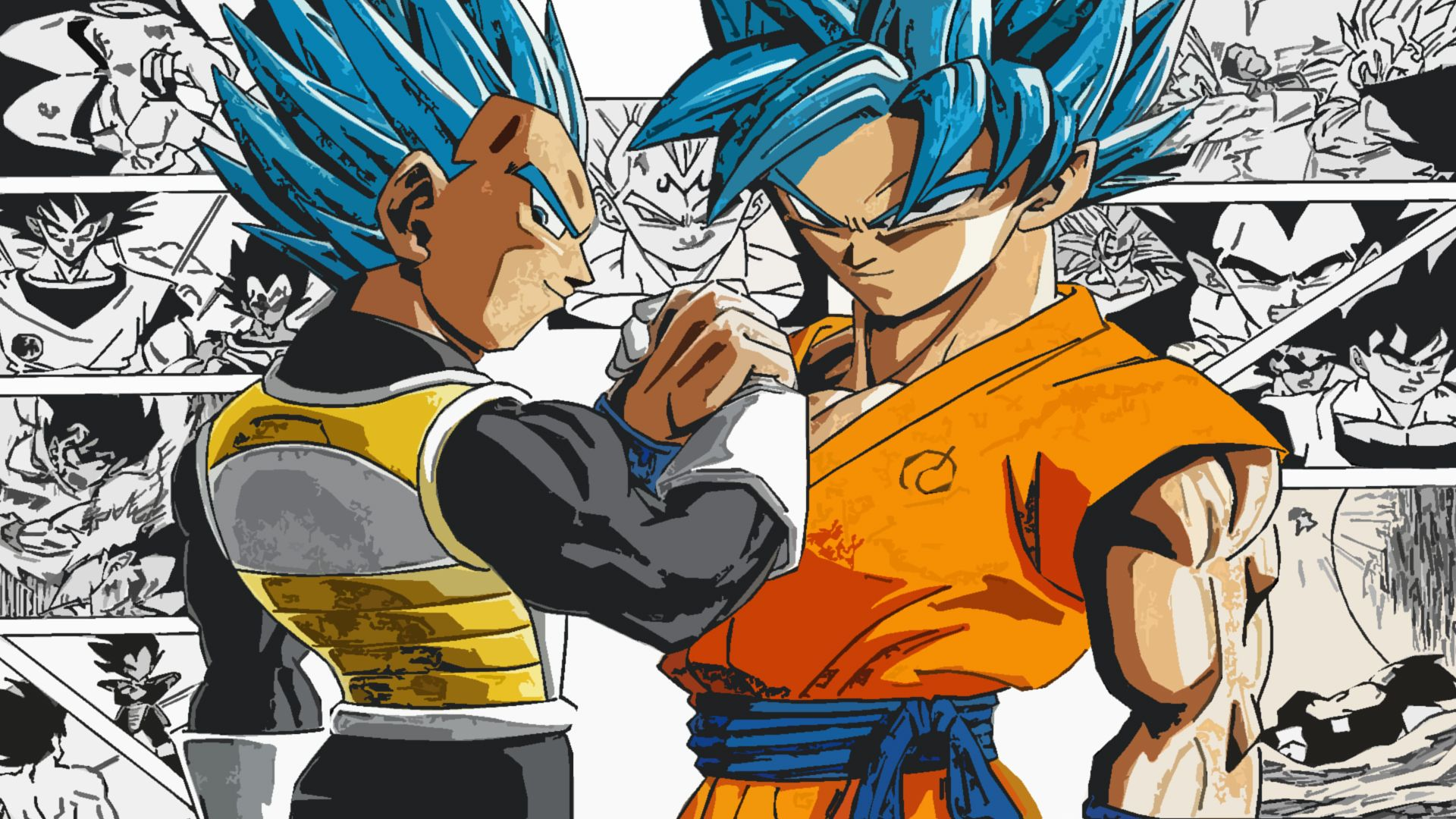 Super Saiyan Blue Goku And Vegeta Hd Wallpaper From Gallsource Com